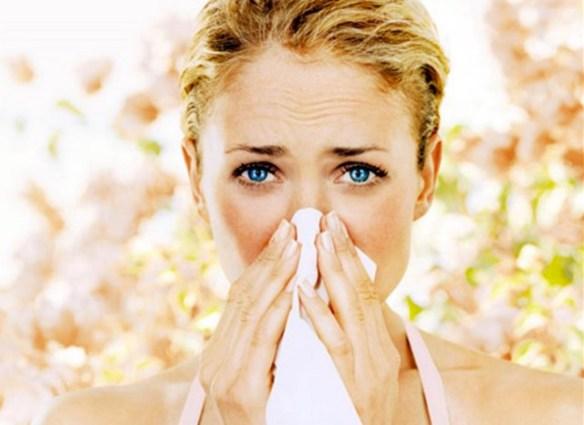 allergien im frühling hotnewsblog